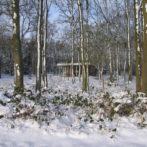 BH-winter